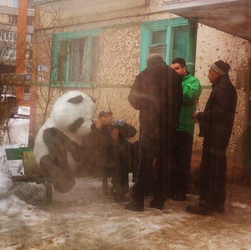 Приколы из России (43 фото)