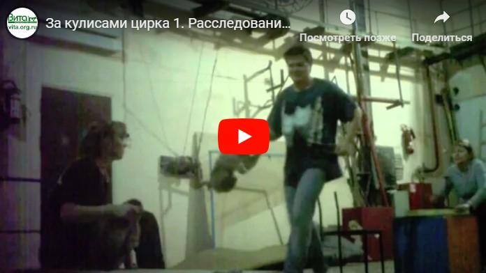 Порно видео за кулисами цирка