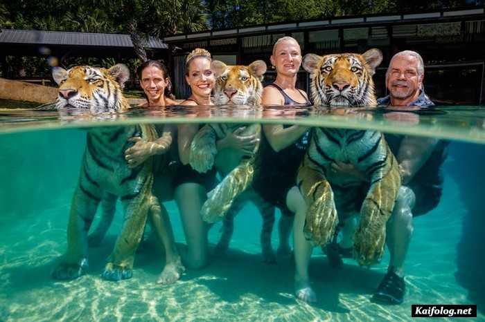 лучшая фотография конкурса National Geographic 2019